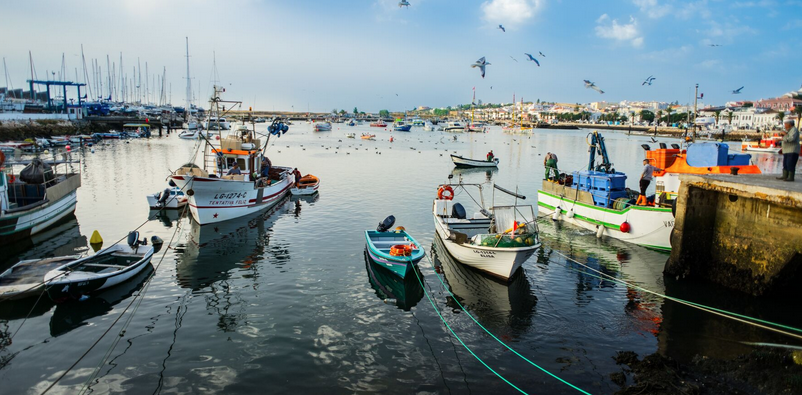 Habour with small fishing boats