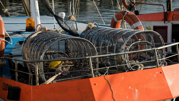 Photo of dredge netting
