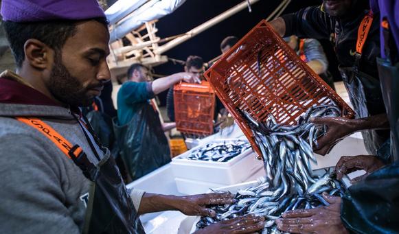 Fishermen in Kavala, Greece
