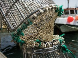 Better selectivity the key to reducing discards